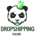 Dropshipping Teacher | Dropshipping For Beginners